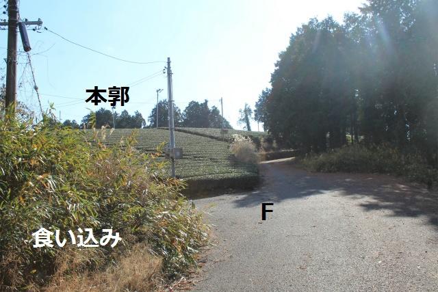 IMG_8294.jpg