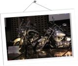 frame05-Y-DM01