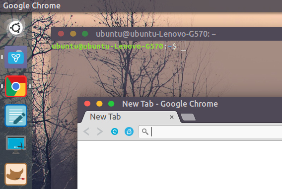 Royal Ubuntu Theme テーマ
