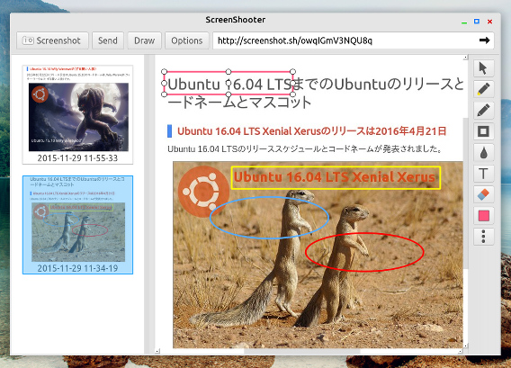 ScreenShooter Ubuntu 画面キャプチャ