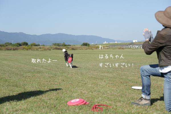 IMG_6135.jpg