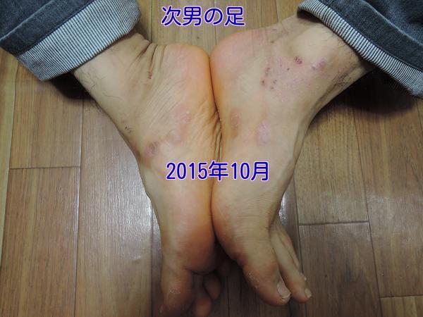 gcvfPaU4U58NPah1452040312_1452040595.jpg