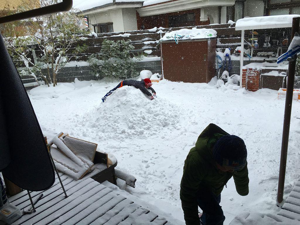 20160124大雪 (47)