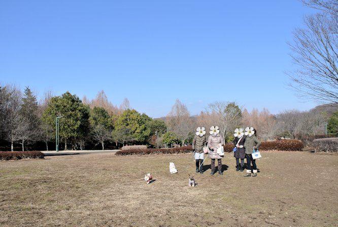 2016長岡公園0050