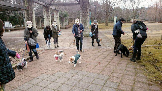 2016長岡公園0111