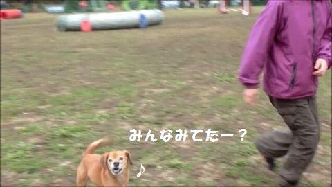 s-スナップショット 4 (2015-12-14 11-31)編集1