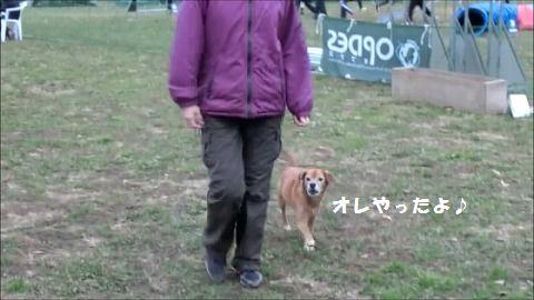 s-スナップショット 19 (2015-12-14 11-27)編集1