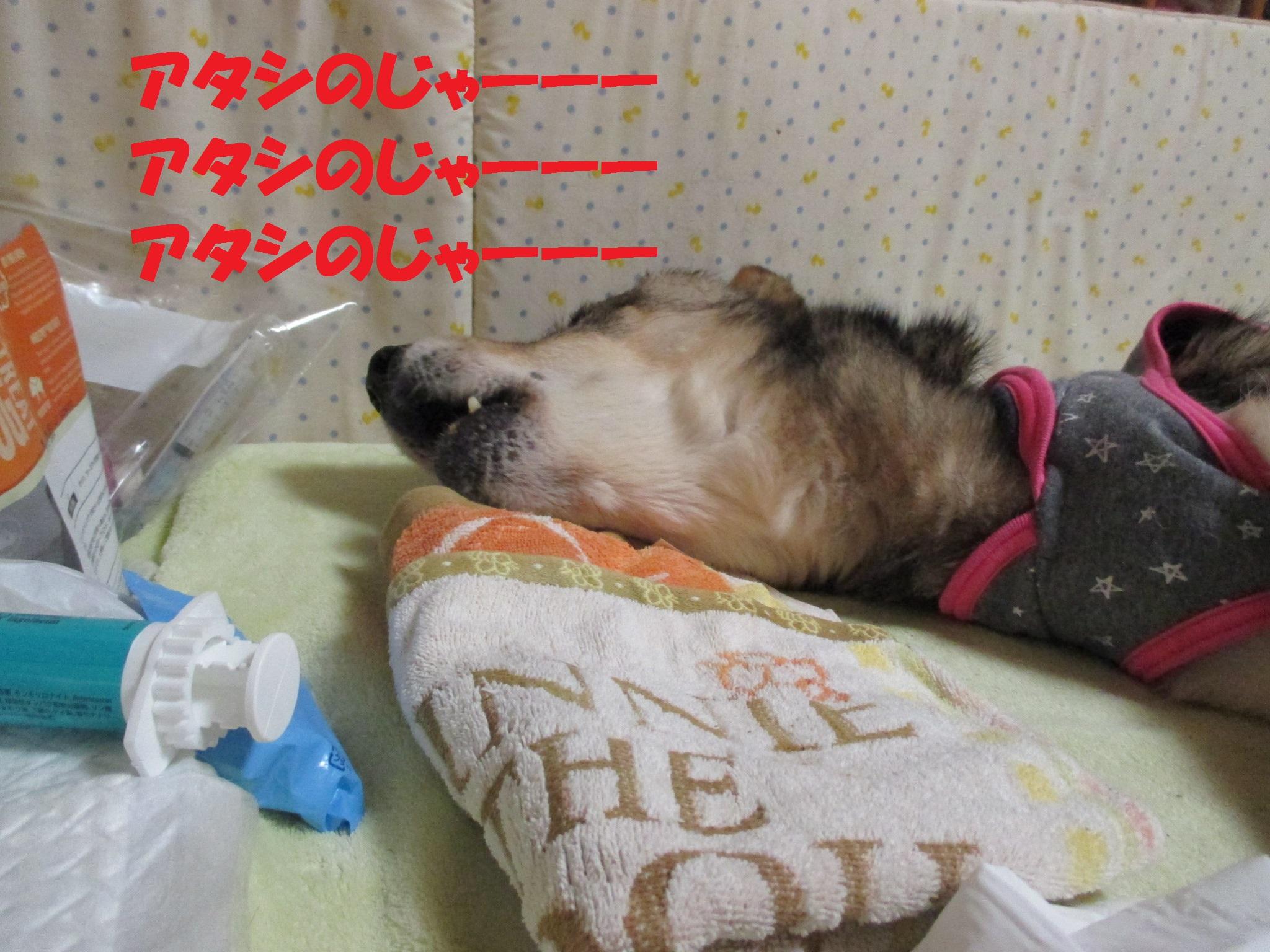 ゆば 0209
