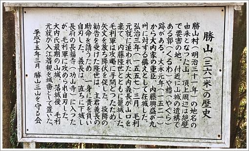 katsuyama_half03.jpg