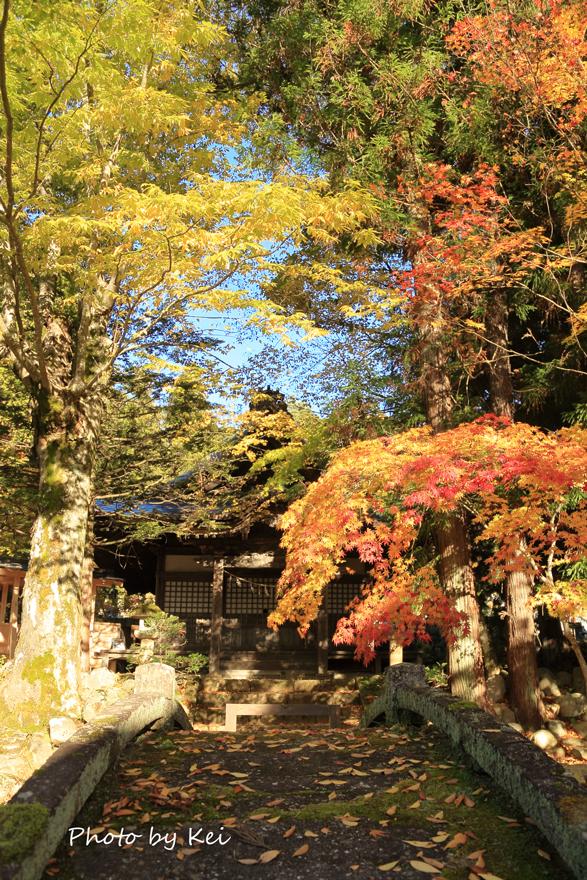 takayama128.jpg