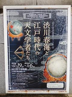 shibukawa1.jpg