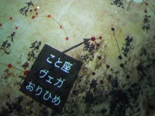 shibukawa8.jpg
