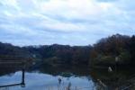 冬の貯水池と紅葉