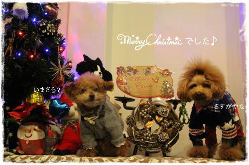 2015クリスマス7s