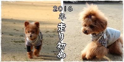 20160103-9.jpg