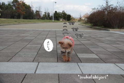 fukkatsu1_s.jpg