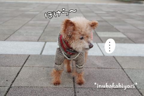 fukkatsu2_s.jpg