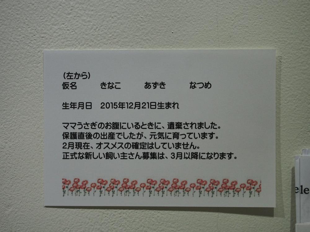 B2136386.jpg