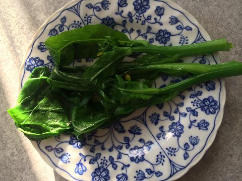 20160110 アスパラ菜④