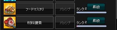 mabinogi_2016_01_24_002.jpg