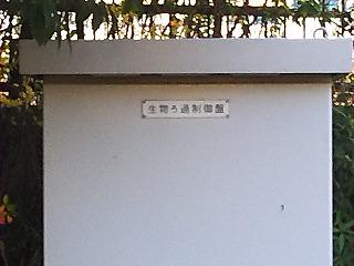 aomi8.jpg