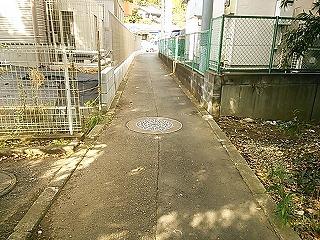 nagasawa3-1-3.jpg