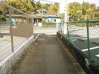 nagasawa3-1-4.jpg