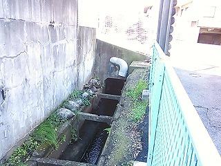 nishinagasawa1-3.jpg