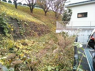 yurigaoka10.jpg