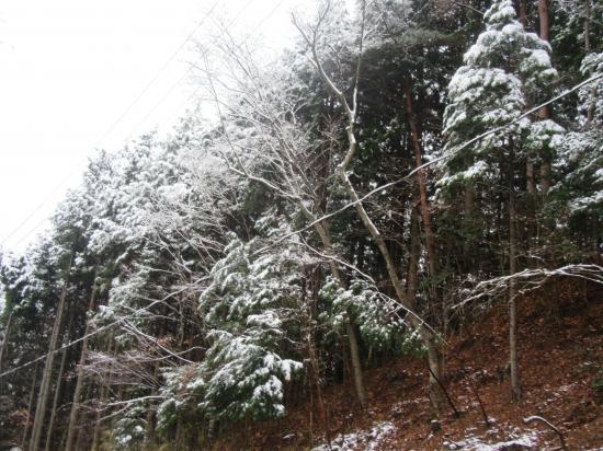 2015.12.18滋賀・三重5