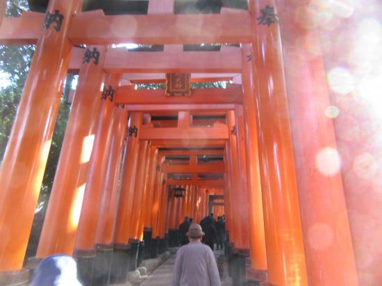 2016.1.4京都・滋賀2