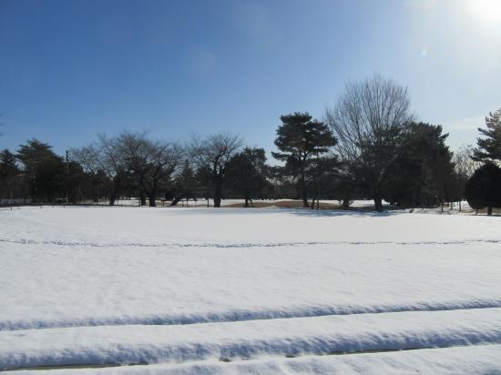 2016.1.21東京・茨城3