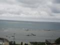 2016.2.2沖縄2
