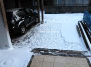 数十年に一度の寒波(雪)