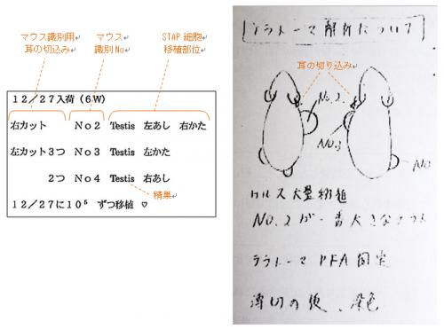 実験ノート_convert