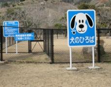kinryu-dogran-shita-140605.jpg
