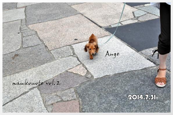 20160223102.jpg