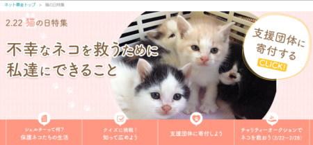 2.22猫の日特集-Yahoo!募金