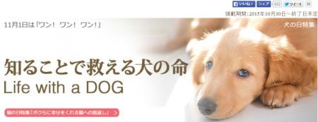 Yahoo!ヘッダー「犬の日特集」