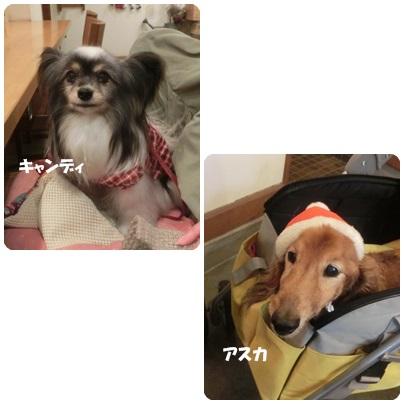 2015-12-3.jpg