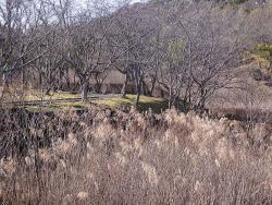 鏡山公園を散歩20151230-3