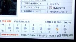 最低気温はマイナス4℃