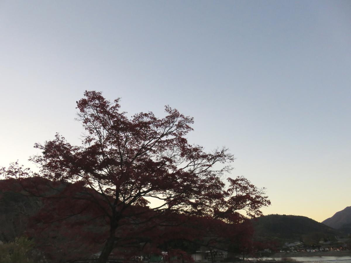 嵐山公園5