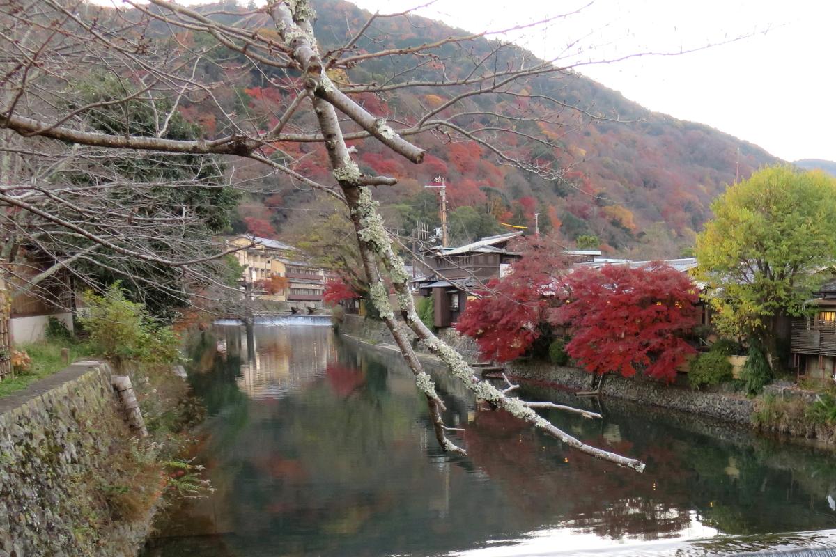 嵐山公園6