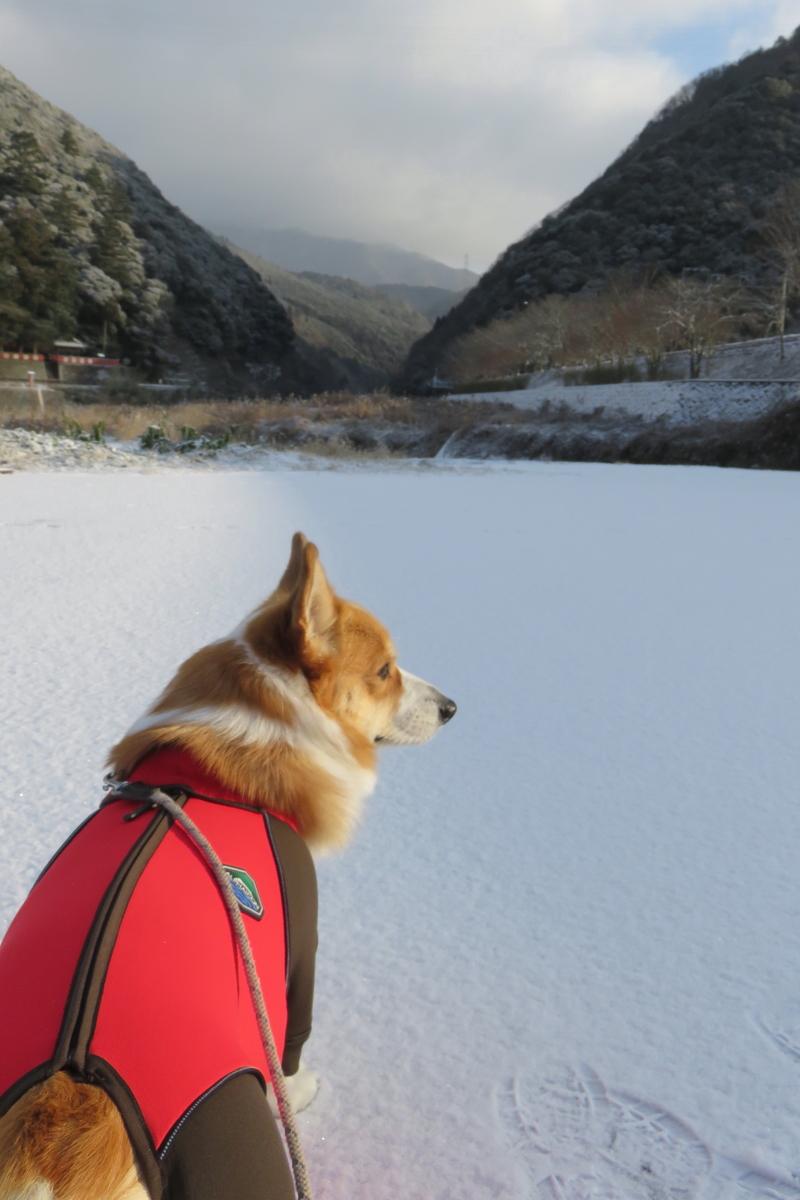 まっさらの雪2