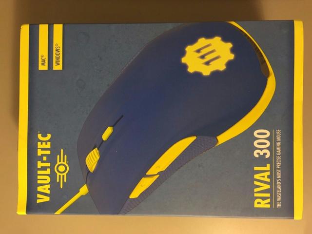 Rival300_Fallout4_Edition_01.jpg