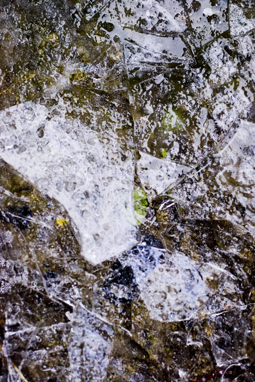 ice_16_1_20_1.jpg