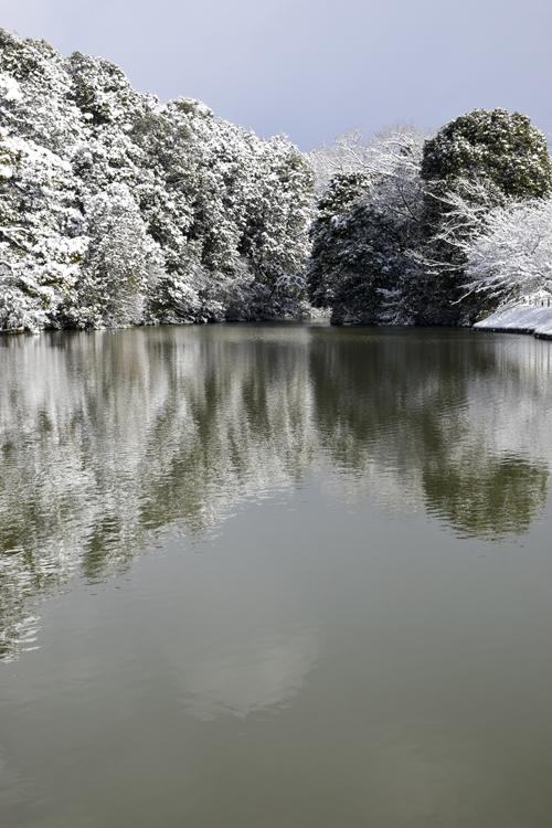 snow_pond_16_3_1_1.jpg