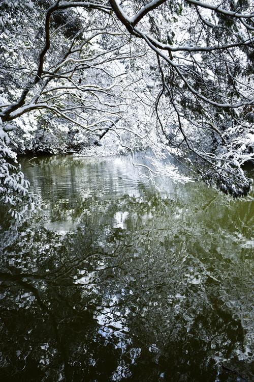 snow_pond_16_3_1_4.jpg