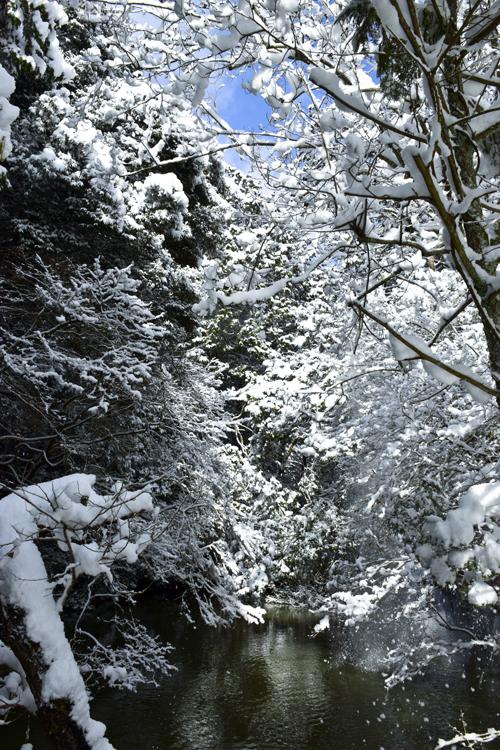 snow_pond_16_3_1_5.jpg